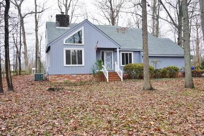 South Chesterfield Single Family Home For Sale: 613 Rebel Ridge Road