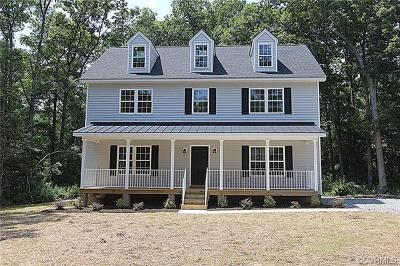 Hanover County Single Family Home For Sale: 10307 New Britton Road