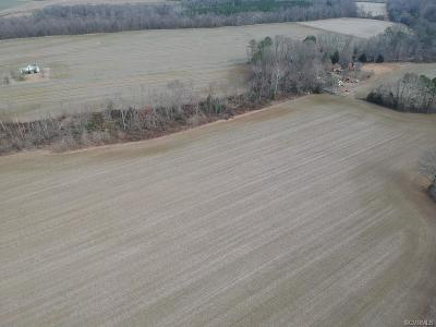Hanover County Residential Lots & Land For Sale: 5405 River Road