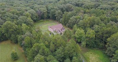 Hanover County Single Family Home For Sale: 11138 Mount Hope Church Road