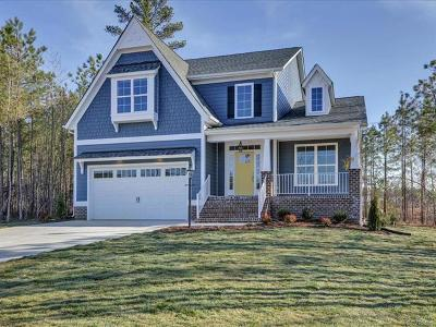 Chesterfield County Single Family Home For Sale: 16843 Warren Crest Court
