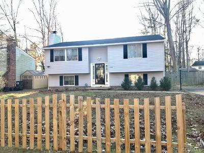 Chesterfield County Single Family Home For Sale: 2206 Old Indian Road