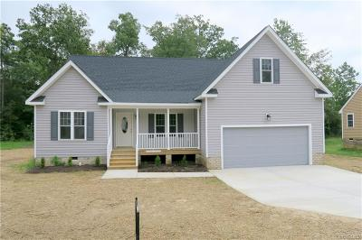 South Chesterfield Single Family Home For Sale: 21113 Baileys Lane