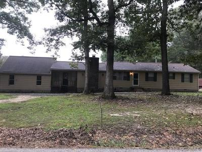 Single Family Home For Sale: 10920 Hitchcock Road
