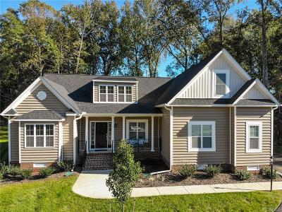 Chesterfield County Single Family Home For Sale: 11007 Vogel Court