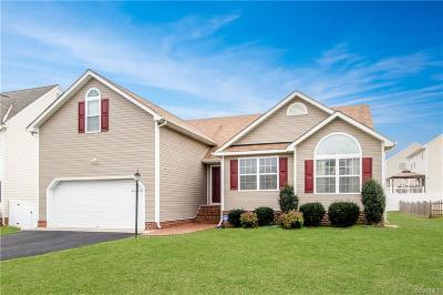 Chesterfield County Single Family Home For Sale: 3907 Pillow Bluff Lane