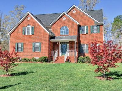 Henrico County Single Family Home For Sale: 10913 Virginia Forest Court