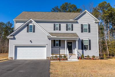 Hanover County Single Family Home For Sale: 10150 Cameron Ridge Drive