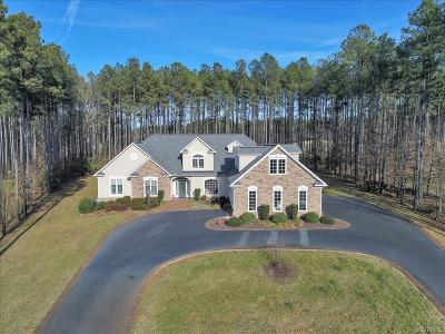Hanover County Single Family Home For Sale: 14539 Bud Lane