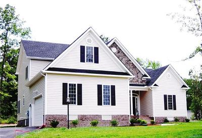 Petersburg Single Family Home For Sale: 19937 E Chesdin Harbor Drive