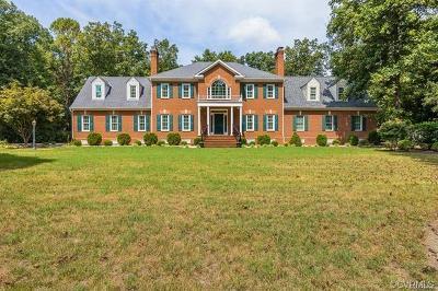 Hanover County Single Family Home For Sale: 9353 Greywood Drive