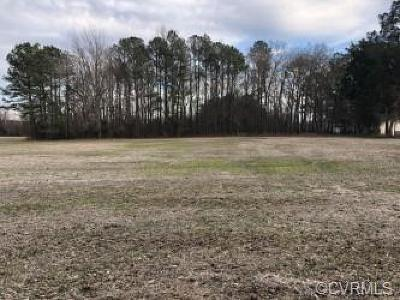 Dinwiddie County Residential Lots & Land For Sale: 9801 Halifax Road