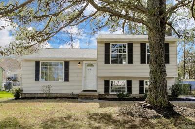 Henrico Single Family Home For Sale: 921 Pleasant Street