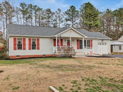Chesterfield Single Family Home For Sale: 9713 Pampas Drive