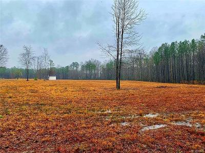 Midlothian Land For Sale: 17600 Lebanon Road