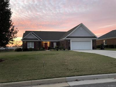 Single Family Home For Sale: 225 Lighthouse Pointe