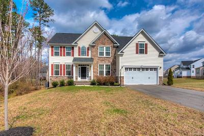 Henrico County Single Family Home For Sale: 11520 Hainesland Drive