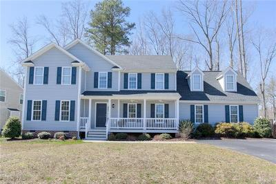 Chesterfield County Single Family Home For Sale: 9936 Ethens Castle Drive