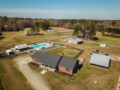 Chesterfield County Single Family Home For Sale: 9950 River Road