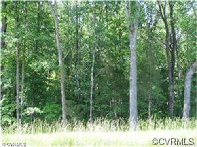 Henrico Land For Sale: 8950 Buffin Road