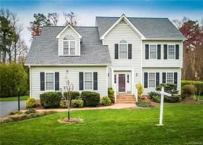 Hanover County Single Family Home For Sale: 6077 Pond Grass Road