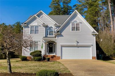 Henrico County Single Family Home For Sale: 9532 Hagan Road