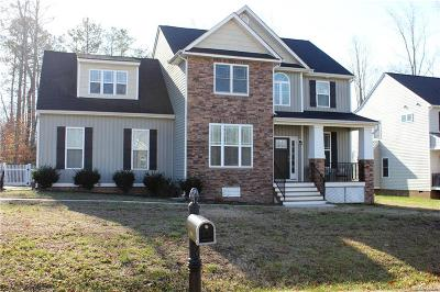New Kent Single Family Home For Sale: 9901 Snipe Lane