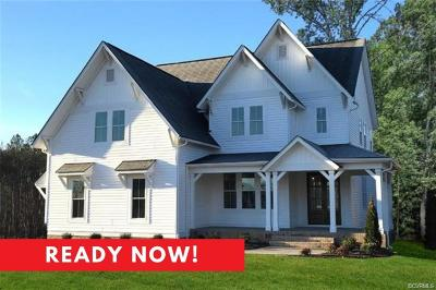 Chesterfield County Single Family Home For Sale: 4600 Lake Summer Loop