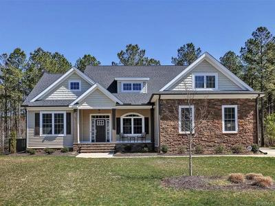 Chesterfield County Single Family Home For Sale: 8467 Highmarker Court