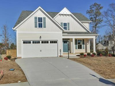 Midlothian Single Family Home For Sale: 9900 Paddock Wood Court