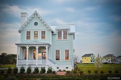 Goochland Single Family Home For Sale: 2889 Swann's Peak Cove