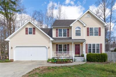 Chesterfield County Single Family Home For Sale: 5306 Calavetti Loop