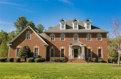 Hanover County Single Family Home For Sale: 10235 Scots Landing Road