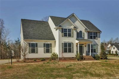 Ashland Single Family Home For Sale: 9123 Colonnade Circle