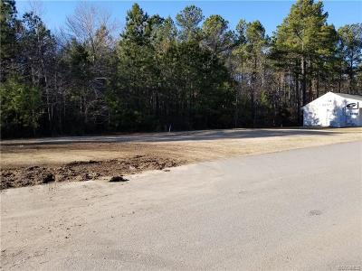 Dinwiddie Commercial For Sale: 23198 Airport Street