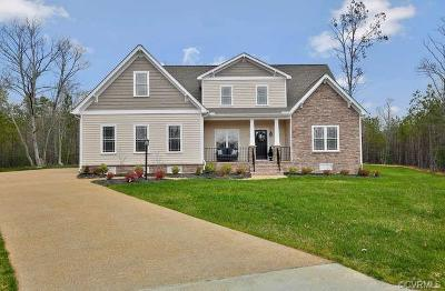 Chesterfield Single Family Home For Sale: 19900 Oyster Point Court
