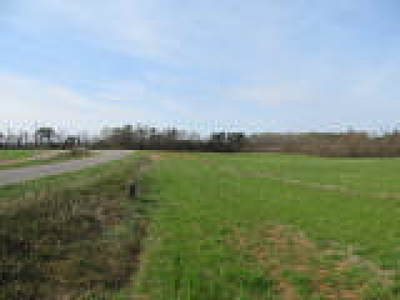 Land For Sale: 12701 Continental Road