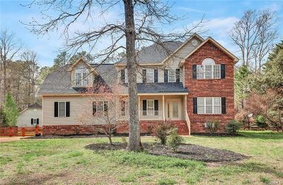 Chesterfield Single Family Home For Sale: 11910 Carters Valley Turn