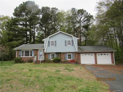 Dinwiddie County Single Family Home For Sale: 3602 Chesdin Boulevard