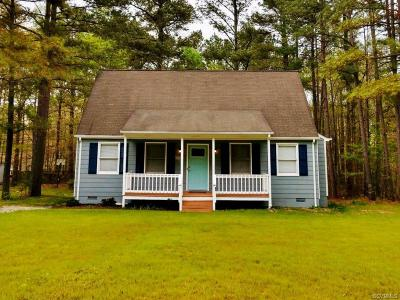 Dinwiddie County Single Family Home For Sale: 24408 Gaydell Drive