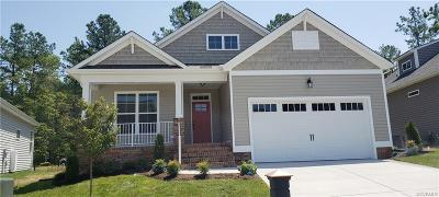 Chesterfield Single Family Home For Sale: 8731 Fishers Green Place