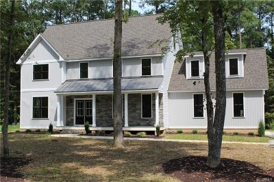 Goochland Single Family Home For Sale: 215 E Brook Run Drive