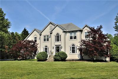 Hanover County Single Family Home For Sale: 14038 Big Bear Court