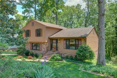 Henrico Single Family Home For Sale: 10115 Idlebrook Drive