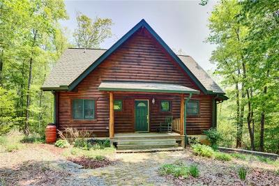 Single Family Home For Sale: 1210 Old Virginia Street