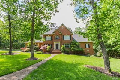 Chesterfield County Single Family Home For Sale: 10848 Egret Court
