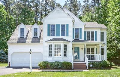 Hanover County Single Family Home For Sale: 9031 Coolwater Lane