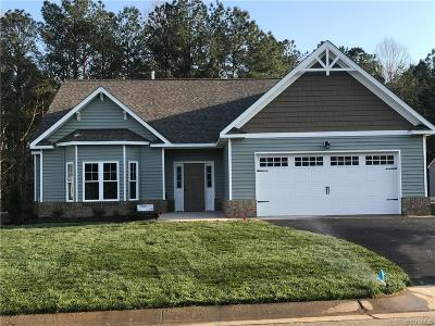 Hanover County Single Family Home For Sale: 11249 Ashland Park Drive
