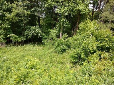 Chester, Chesterfield Land For Sale: 2034 E Hundred Road