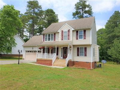 Dinwiddie Single Family Home For Sale: 24512 Lake Drive